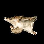 derelict_wombat